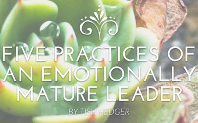 Five Practices of an Emotionally Mature Leader