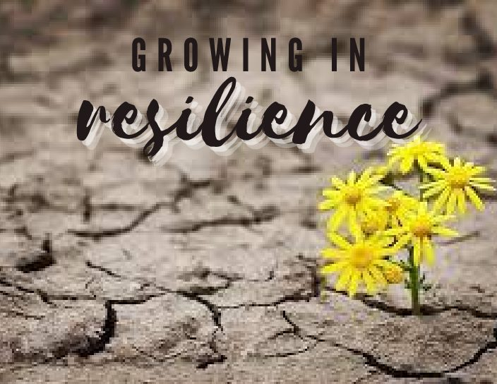 Growing in Resilience: The Importance of Off-Loading